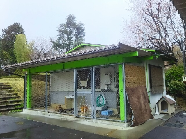 茨城県:迷子猫届け先一覧(保健所・動物愛護セン …