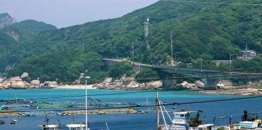 kasiwajima1