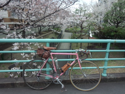 photo_derosa_sakura_2019_13_2019_0410.jpg