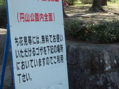 photo_randner_kyouto_sakura_2019_2_20_2019_04041.jpg