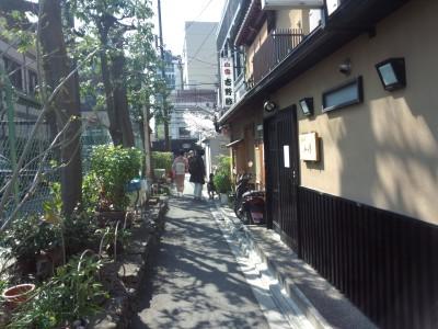 photo_randner_kyouto_sakura_2019_2_23_2019_0404.jpg
