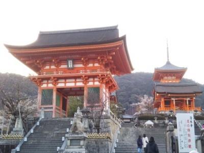 photo_randner_kyouto_sakura_2019_3_3_2019_040511.jpg