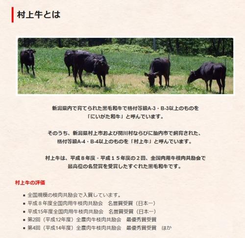 ふるさと納税2019 新潟県村上市 村上牛すき焼き用 追加3