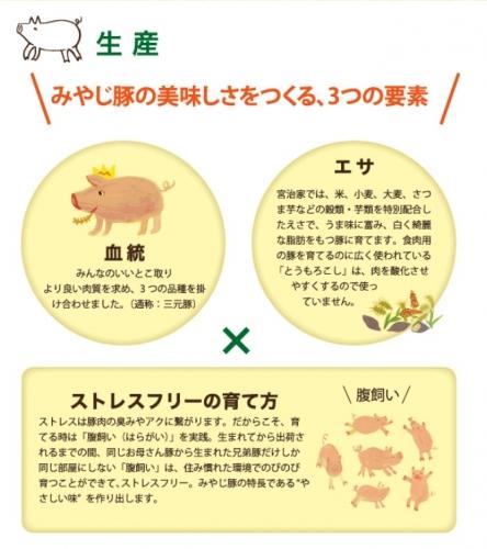 湘南みやじ豚BBQセット (15)
