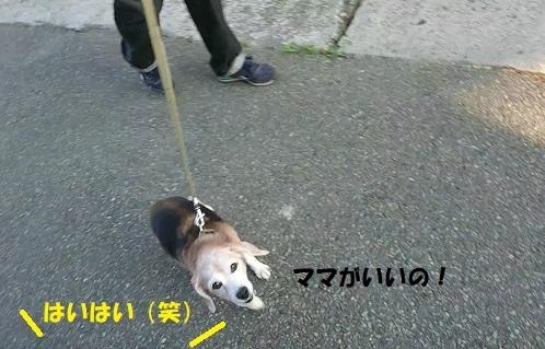 MOV_0709_000003.jpg