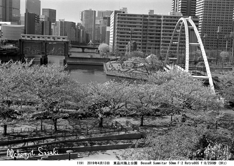 海上公園1191-22