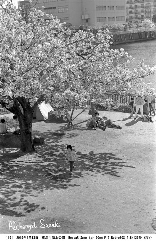 海上公園1191-26