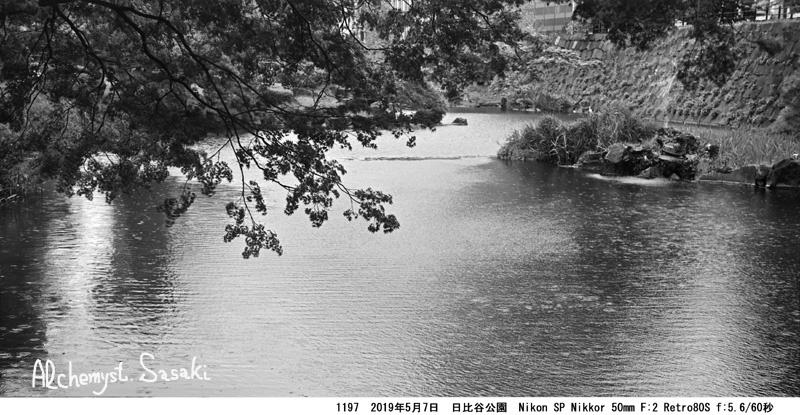 自然の都心1197-19