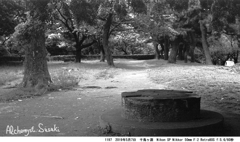 自然の都心1197-32