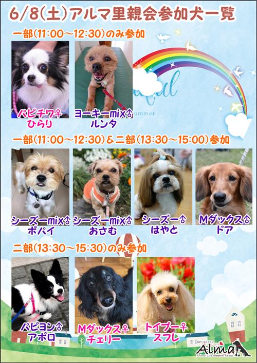 poster2web_20190609.jpg