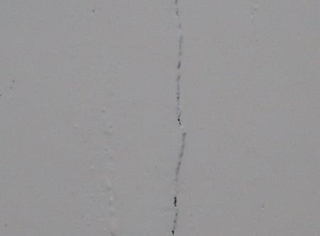 earthquake cracks042219 (30)
