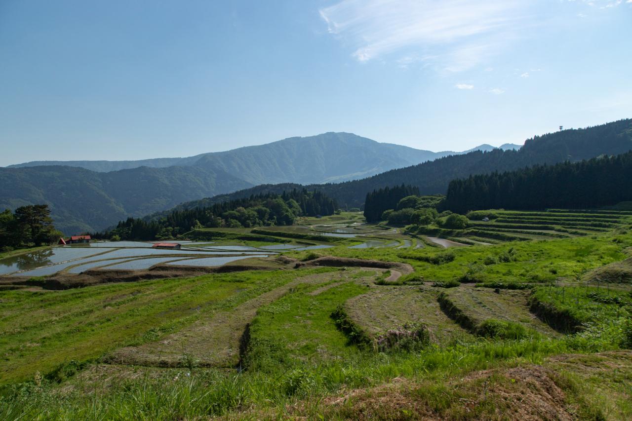 棚田と氷ノ山