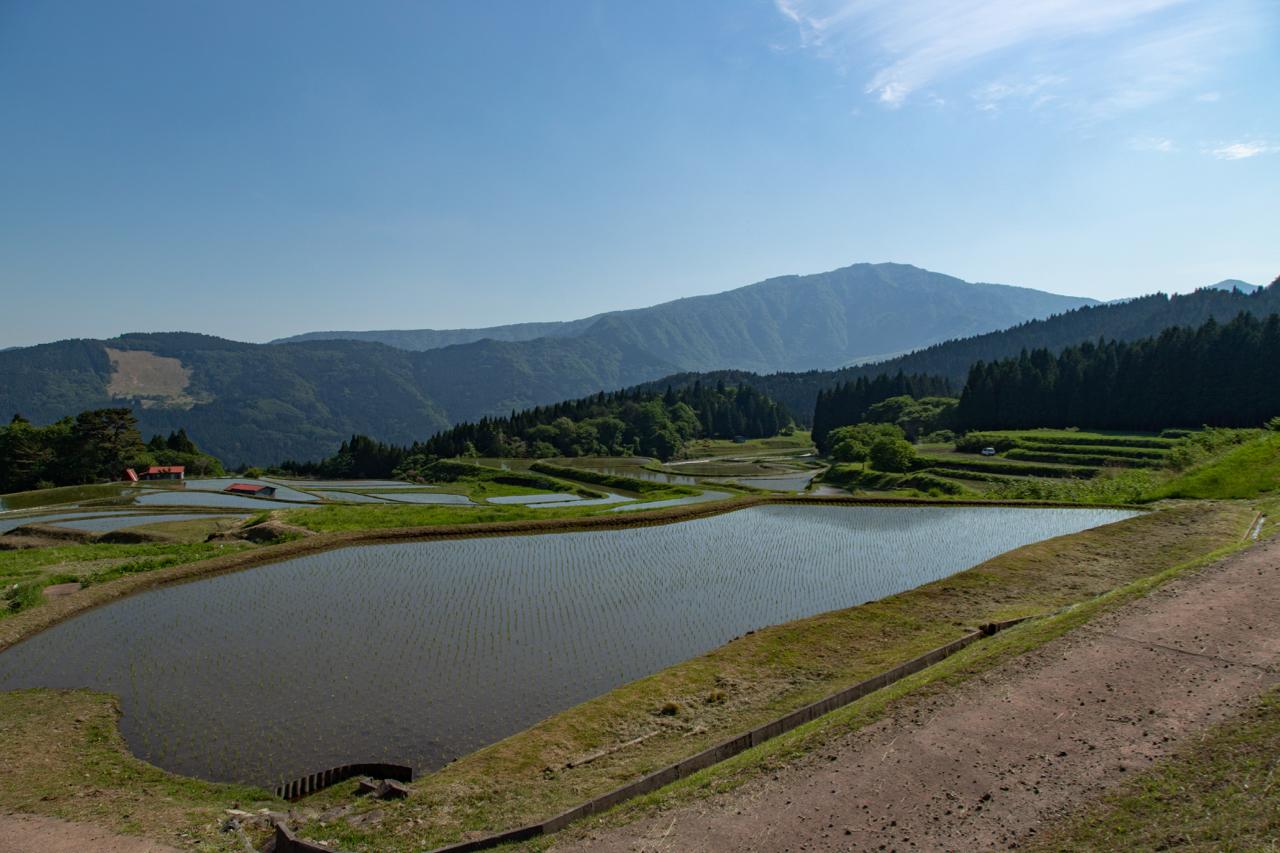 棚田と氷ノ山2