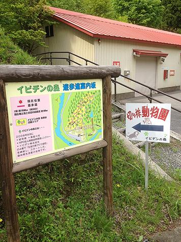 2019 5 7 藤橋18