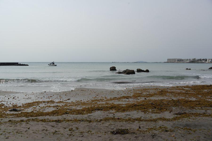 御用邸のある海岸-3