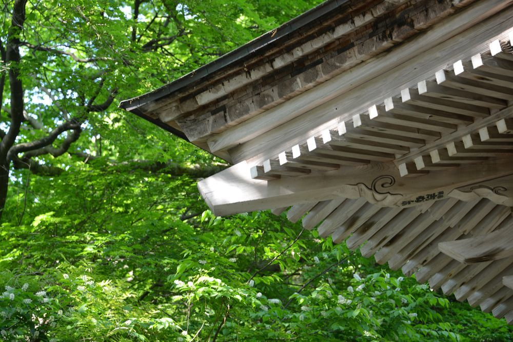 新緑の西生寺-5