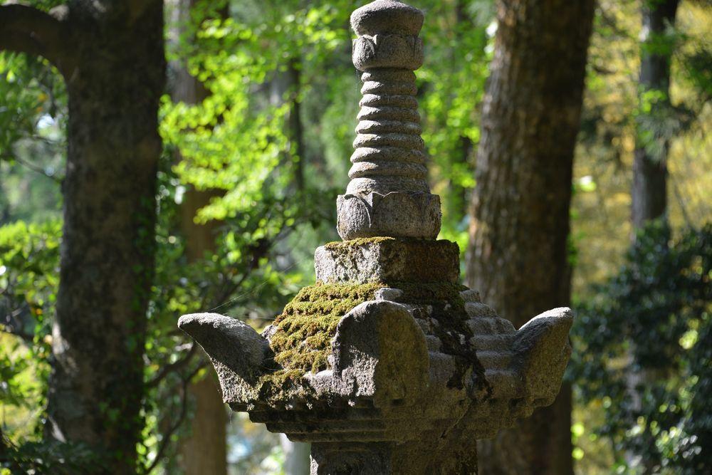 新緑の西生寺-8