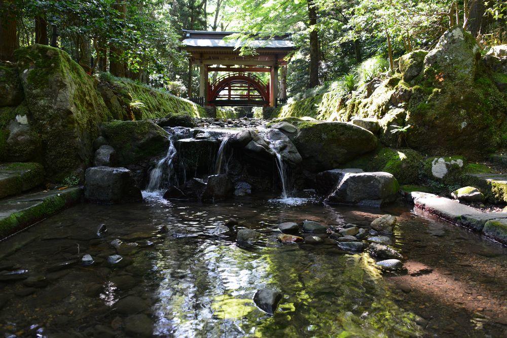 神社 木漏れ日-2