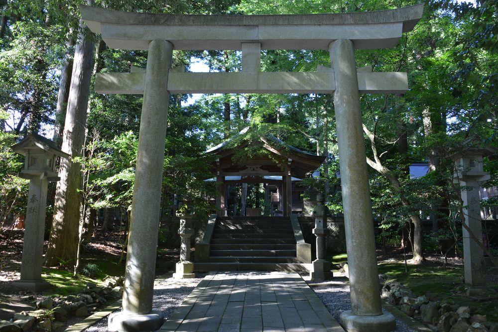 神社 木漏れ日-4