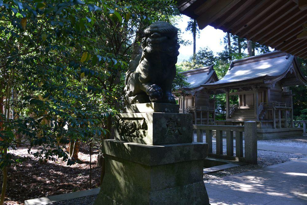 神社 木漏れ日-5