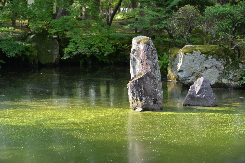清水園庭園-5