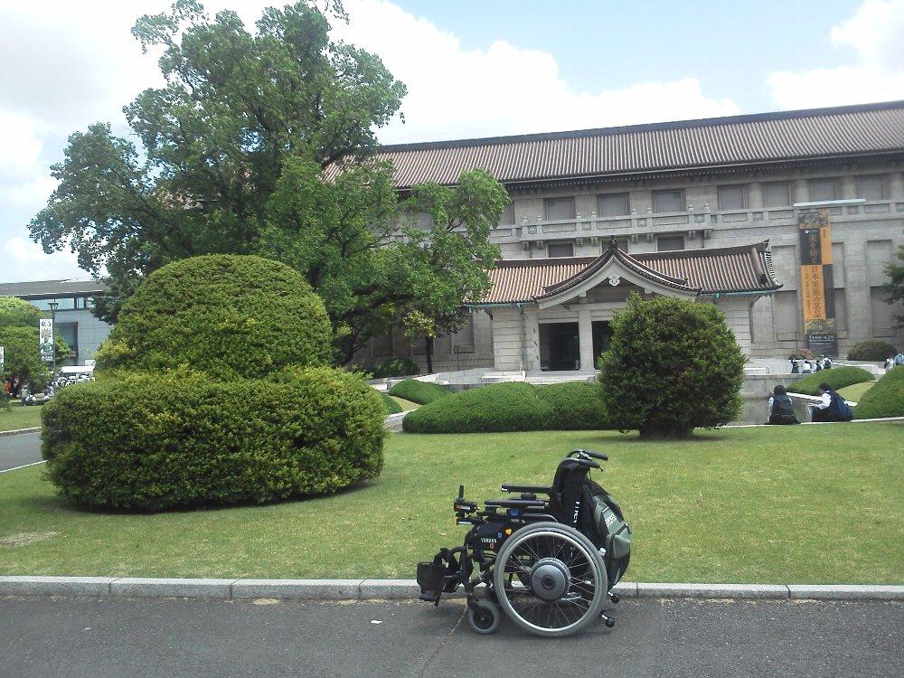 F1000355東京国立博物館5月17日ユリノキと車いす