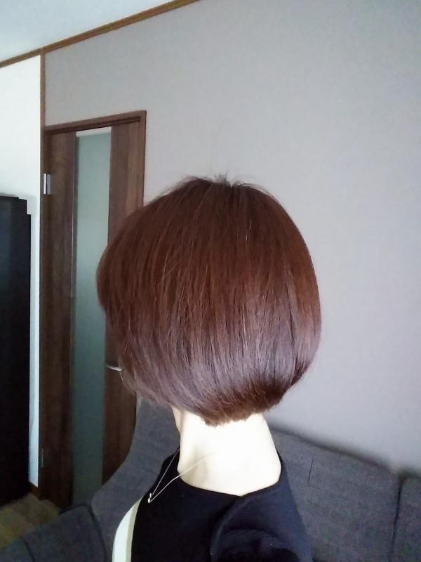 20190606髪の今の様子