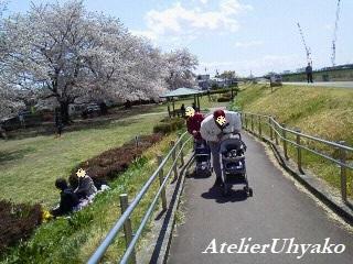190409川原の花見P1013663