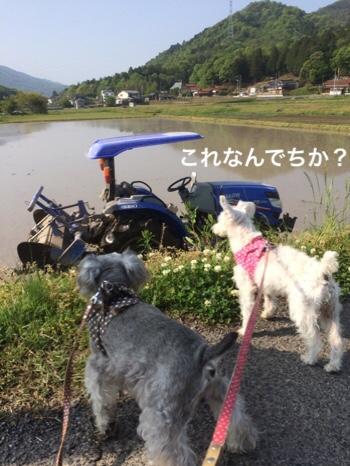fc2blog_20190508074609d7e.jpg