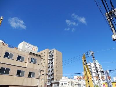 DSCN1101.jpg