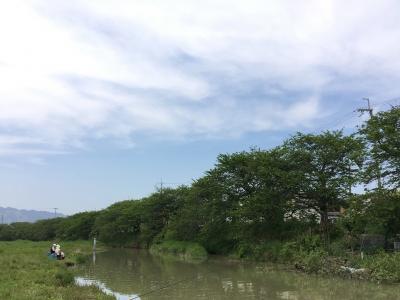 最高のいい天気になった憲法記念日の堅田周辺(5月3日12時30分頃)