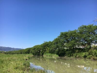 快晴の堅田付近(5月8日10時20分頃)