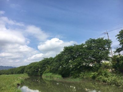 堅田周辺は昼前頃には青空が拡がるいい天気になりました(5月15日10時10分頃)