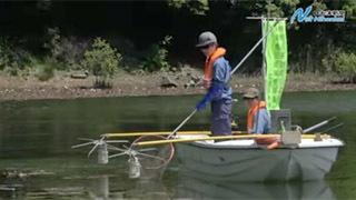 鳥取県多鯰ケ池で行われた電撃駆除の様子