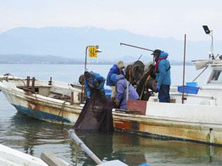 琵琶湖のギルが減ってることが滋賀県の実態調査で判明した