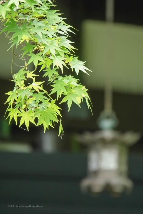 鎌倉3077