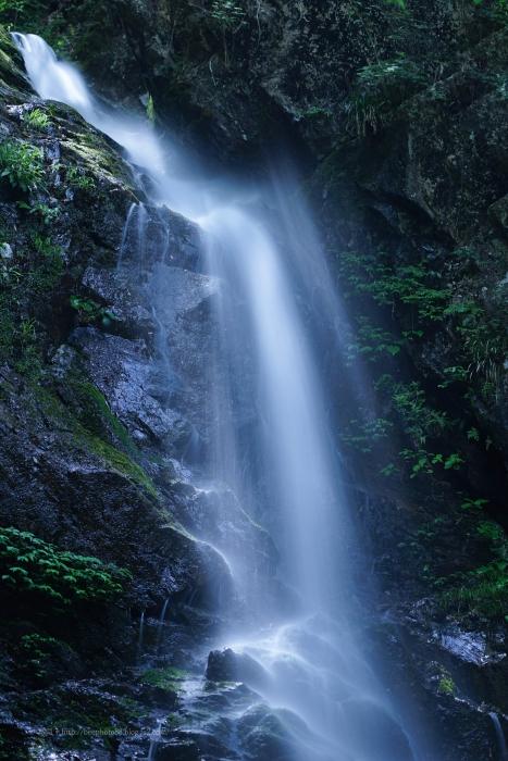 払沢の滝2356-3