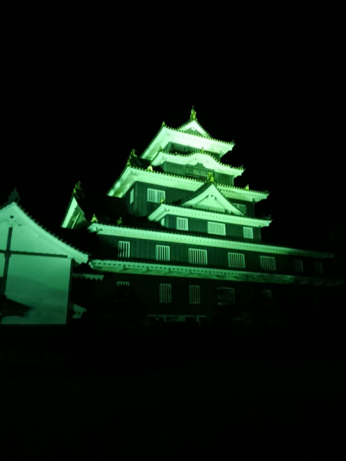 岡山城・夜