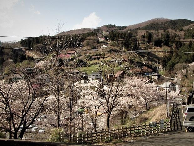 8 19.4.9  日向山スケッチハイク (158)