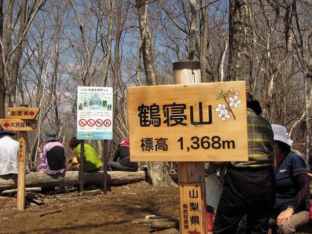 19.4.20 ハイク奈良倉山~大マティ  (30)