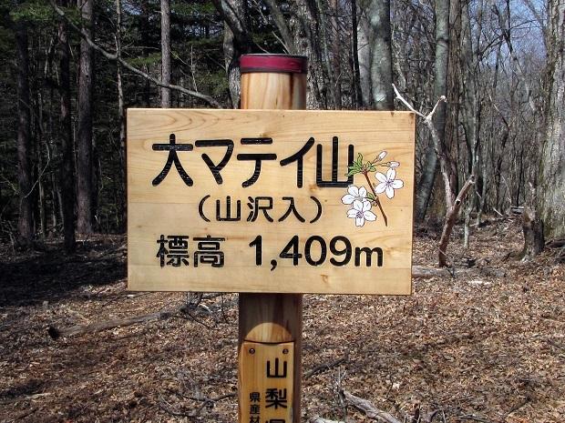 19.4.20 ハイク奈良倉山~大マティ  (66)