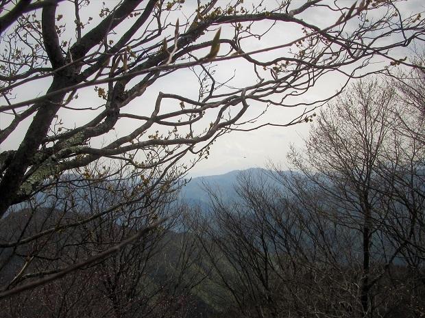 19.5.3 川苔山 (62)