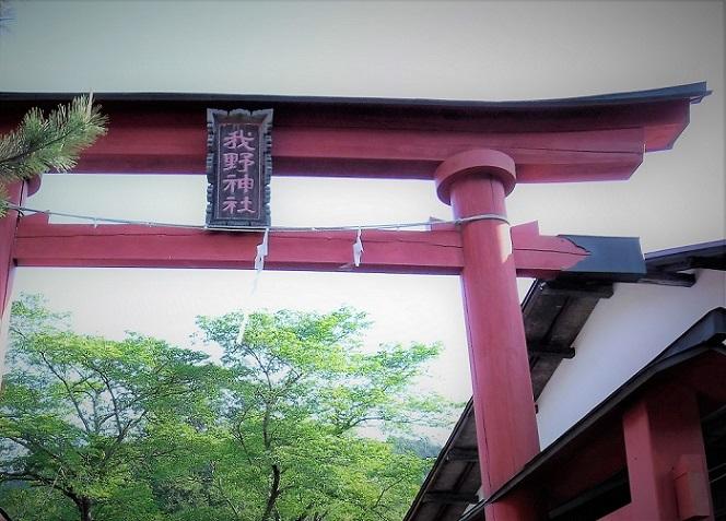 19.5.9-10 奥武蔵国民休暇村 (80)