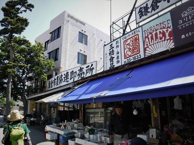 19.5.17 鎌倉七切り通しパート1 (7)