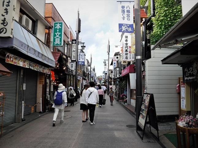 19.5.17 鎌倉七切り通しパート1 (146)