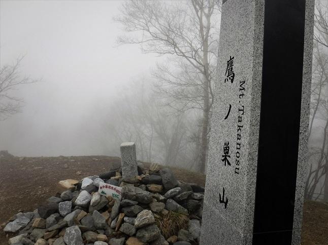 19.5.22 鷹ノ巣山 (115)