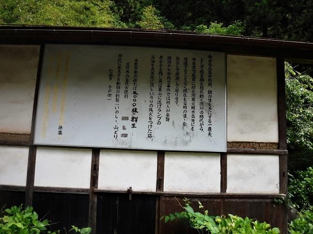 19.6.13 竹寺ー子の権現 (202)