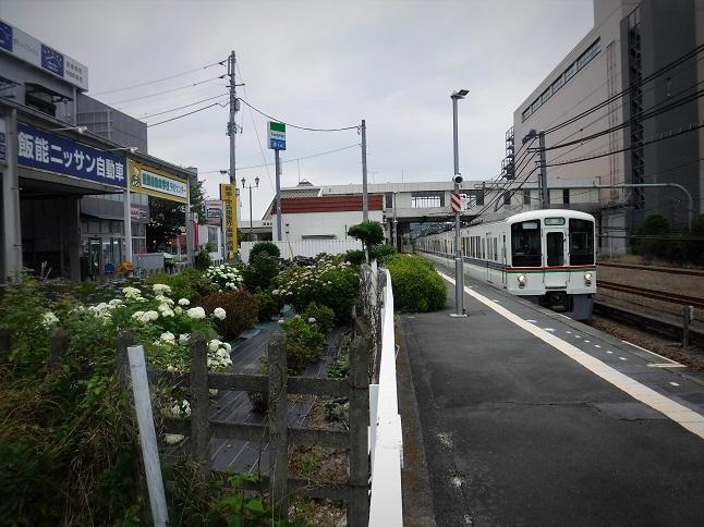 6 19.6.20 日和田岩トレ (9)