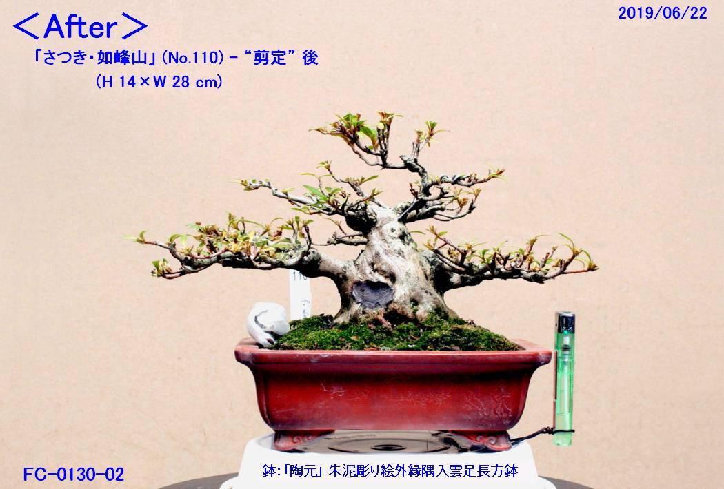 FC0130-02.jpg