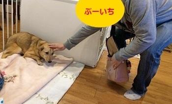 19_04_18_01.jpg